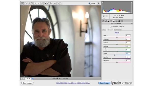 Using the Point Curve adjustment: Photoshop CS4 for Photographers: Camera Raw