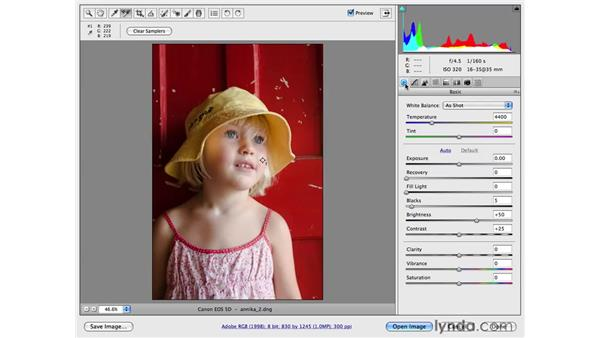 Adding tone curves into a photographic workflow: Photoshop CS4 for Photographers: Camera Raw