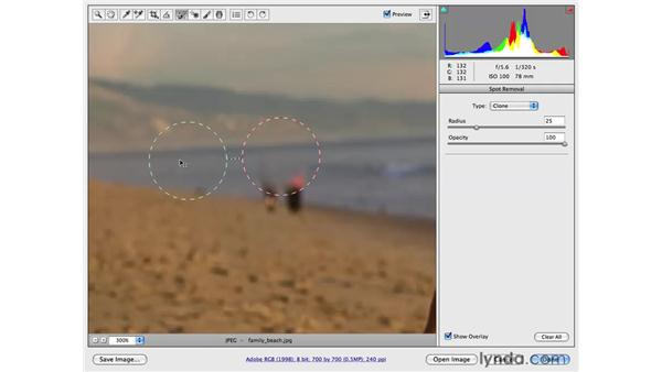 Cloning away background distractions: Photoshop CS4 for Photographers: Camera Raw
