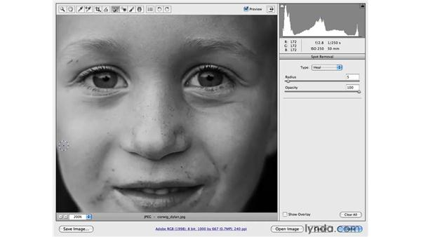 Removing blemishes on a face: Photoshop CS4 for Photographers: Camera Raw