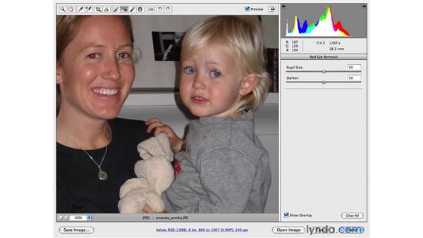 Removing red-eye: Photoshop CS4 for Photographers: Camera Raw