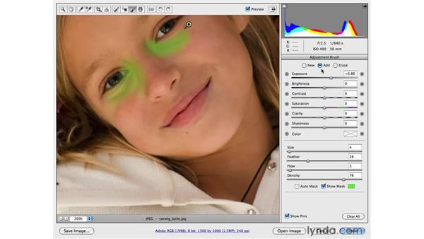 Increasing visual interest by brightening shadows: Photoshop CS4 for Photographers: Camera Raw