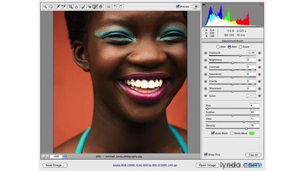 Whitening teeth: Photoshop CS4 for Photographers: Camera Raw