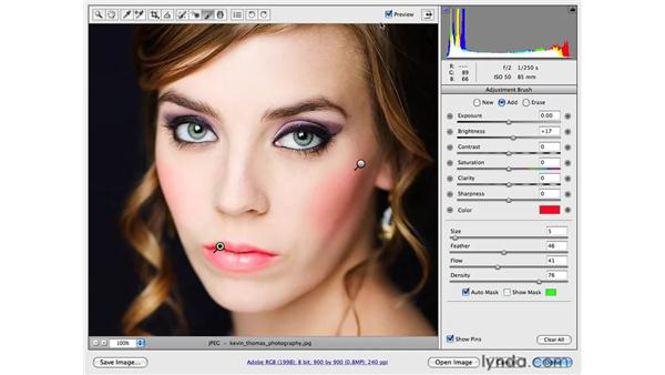 Enhancing makeup by adding color: Photoshop CS4 for Photographers: Camera Raw