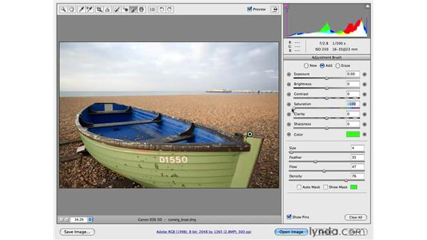 Changing color and darkening the sky: Photoshop CS4 for Photographers: Camera Raw