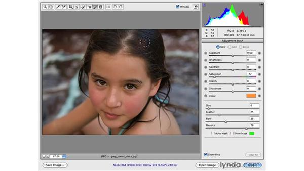 Correcting color : Photoshop CS4 for Photographers: Camera Raw