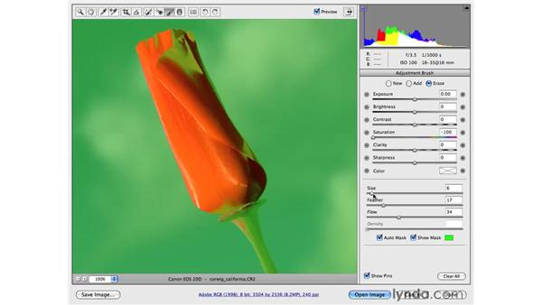Reducing color for emphasis: Photoshop CS4 for Photographers: Camera Raw