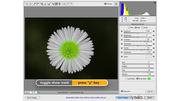 Selective sharpening: Photoshop CS4 for Photographers: Camera Raw
