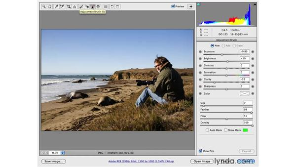 Using the graduated filter: Photoshop CS4 for Photographers: Camera Raw