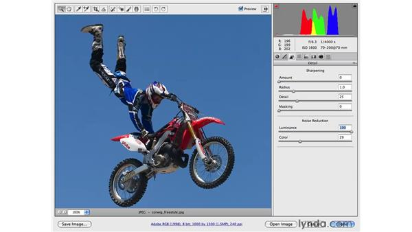 Reducing noise while sharpening an image: Photoshop CS4 for Photographers: Camera Raw