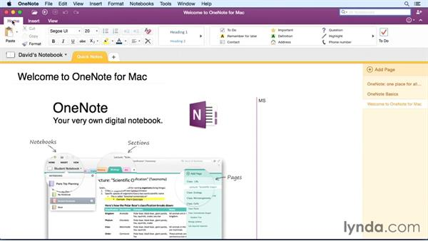 Touring the user interface: Office 365 for Mac: OneNote Essential Training
