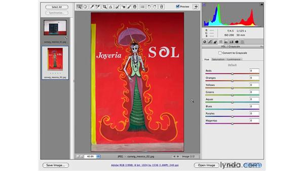 Modifying color and tone with the HSL controls: Photoshop CS4 for Photographers: Camera Raw