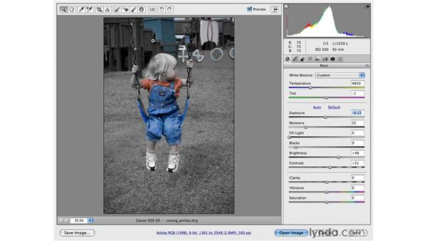 Reducing color with the HSL controls: Photoshop CS4 for Photographers: Camera Raw