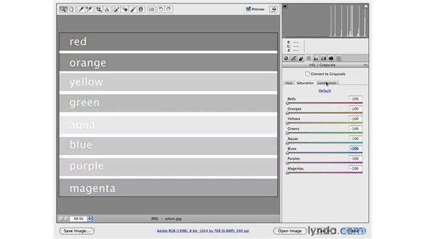The Black and White Controls: Photoshop CS4 for Photographers: Camera Raw