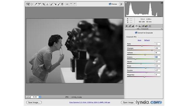 Simple black-and-white conversion: Photoshop CS4 for Photographers: Camera Raw