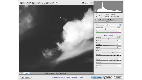 Creating a dramatic black-and-white landscape: Photoshop CS4 for Photographers: Camera Raw