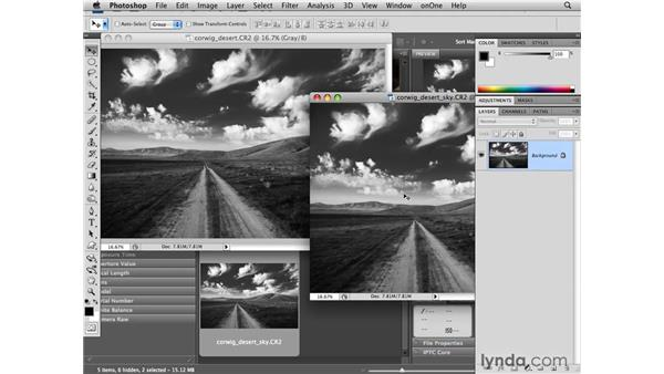 Reducing noise from a black-and-white landscape: Photoshop CS4 for Photographers: Camera Raw