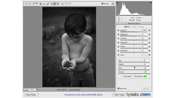 Adding a black-and-white conversion into a workflow: Photoshop CS4 for Photographers: Camera Raw