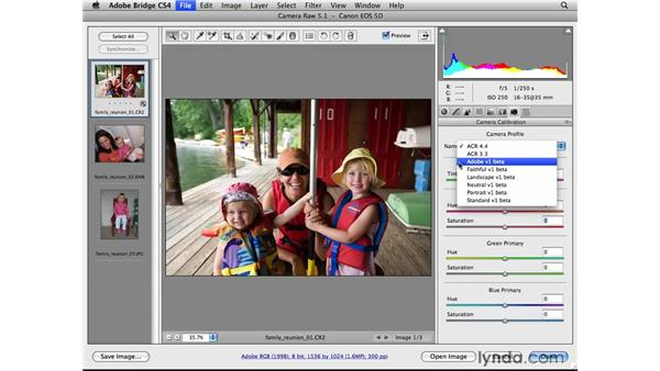Introducing the Camera Calibration panel: Photoshop CS4 for Photographers: Camera Raw