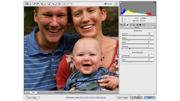 Quick raw processing of multiple files: Photoshop CS4 for Photographers: Camera Raw