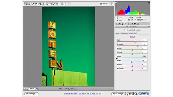 Creative vivid color: Photoshop CS4 for Photographers: Camera Raw