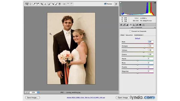 Soft and warm color: Photoshop CS4 for Photographers: Camera Raw