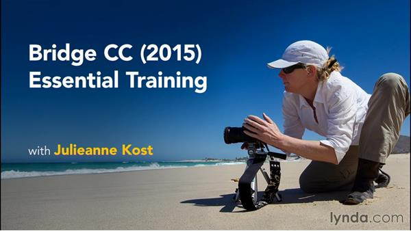 Next steps: Bridge CC (2015) Essential Training