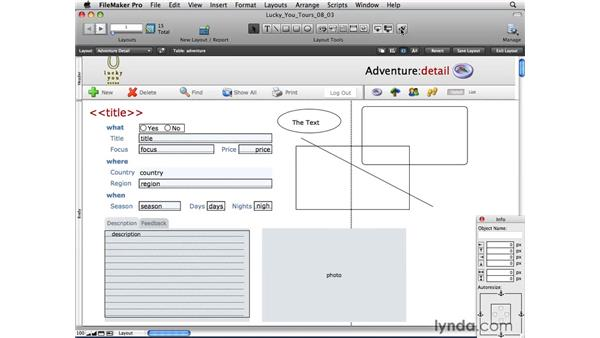 Exploring the layout tools and Status toolbar in Layout mode: FileMaker Pro 10 Essential Training