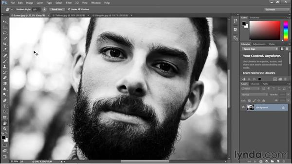 Rotating and resetting the view: Photoshop CC 2015 One-on-One: Fundamentals