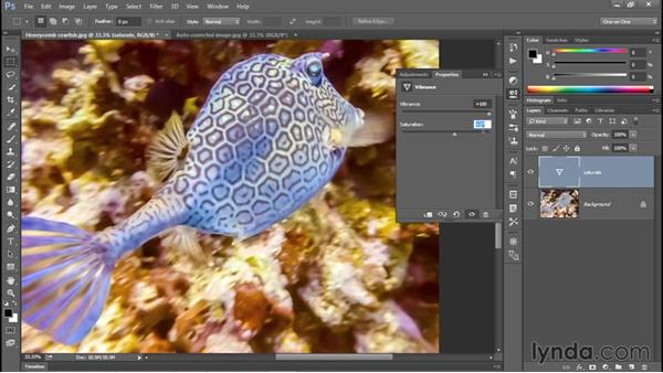 Adjusting color intensity with Vibrance: Photoshop CC 2015 One-on-One: Fundamentals