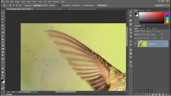 Combining the best of the selection tools: Photoshop CC 2015 One-on-One: Fundamentals