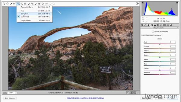 HSL and the Targeted Adjustment tool: Photoshop CC 2015 One-on-One: Fundamentals