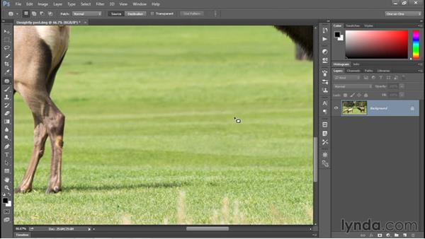 Cleaning up with the Patch tool: Photoshop CC 2015 One-on-One: Fundamentals
