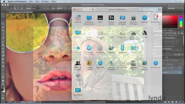Navigating your image: Photoshop CC 2015 One-on-One: Fundamentals