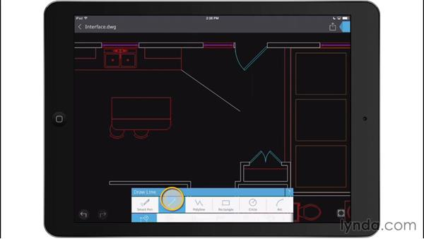 Drawing tools: Up and Running with AutoCAD 360