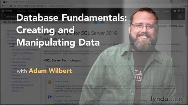 Next steps: Database Fundamentals: Creating and Manipulating Data