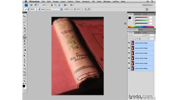 Using Auto-Blend layers to extend depth of field: Photoshop CS4 for Photographers: Creative Effects