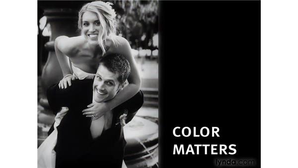 Why color matters: Photoshop CS4 for Photographers: Creative Color