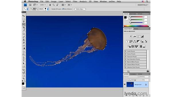 Jellyfish pt. 1: Adjusting composition and color: Photoshop CS4 for Photographers: Creative Color