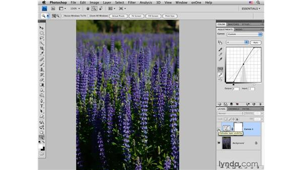 Increasing color saturation and variety with Lab: Photoshop CS4 for Photographers: Creative Color