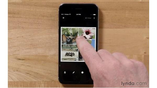 Becoming familiar with the Assistant and how the doorstep model works: Tips and Tricks for Google Photos
