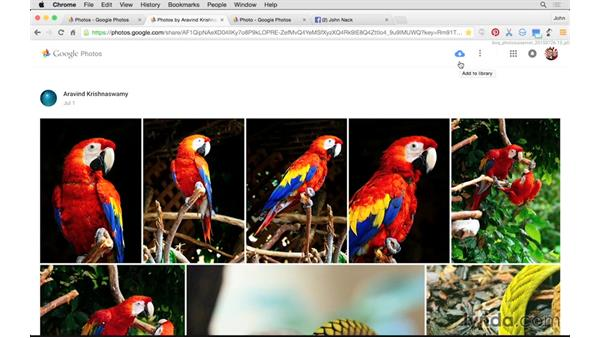 How to share images via Google Photos vs. email, social networks, etc.: Tips and Tricks for Google Photos