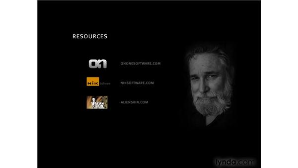 Introducing plug-ins by Nik, onOne, and Alien Skin: Photoshop CS4 for Photographers: Creative Color