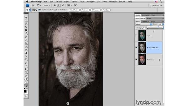 Using Alien Skin plug-ins: Photoshop CS4 for Photographers: Creative Color