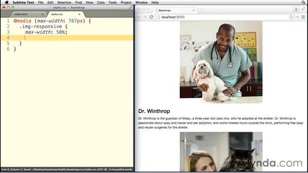 Adding image classes: Bootstrap 3 Essential Training