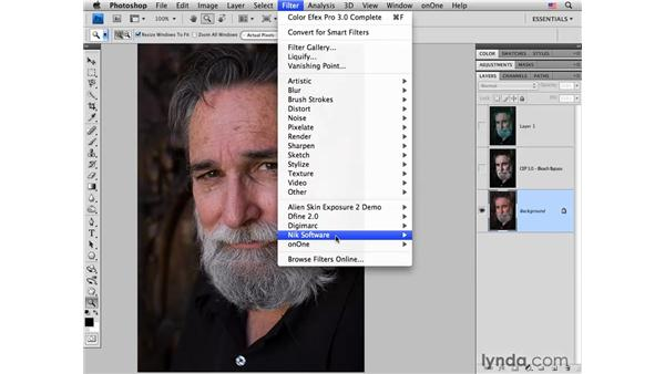 Using Nik plug-ins: Photoshop CS4 for Photographers: Creative Color