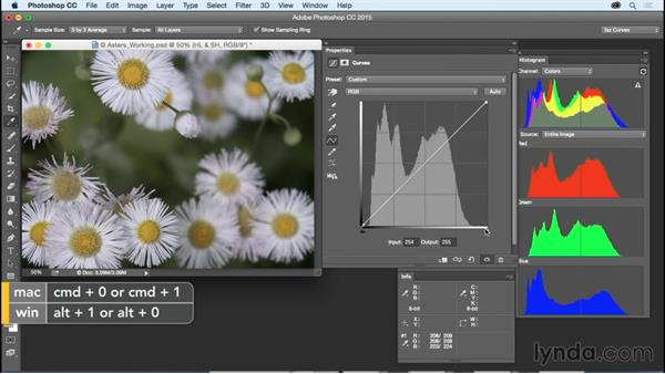 Setting highlights and shadows: Exploring Photoshop: Mastering Curves
