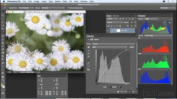 Adjusting brightness and contrast: Exploring Photoshop: Mastering Curves