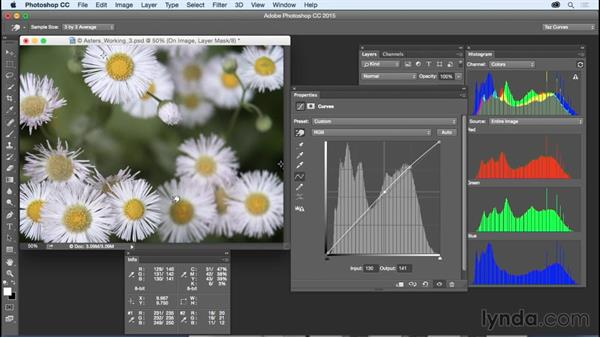 Making area-specific tonal adjustments: Exploring Photoshop: Mastering Curves