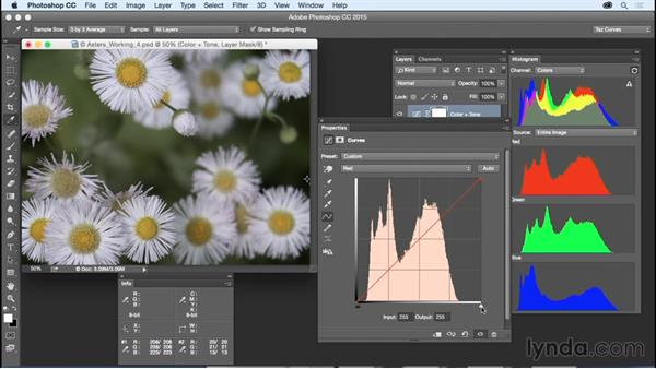 Making simple color and tone adjustments: Exploring Photoshop: Mastering Curves